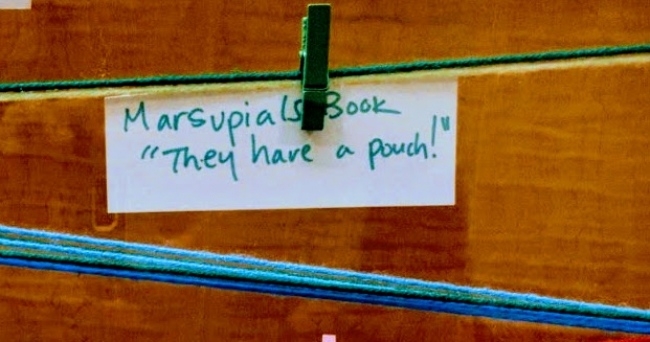 """Image of a a slip of paper reads, """"Marsupials book. They have a pouch!"""""""
