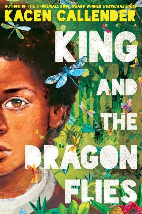 Book cover showing half the face of a boy with medium brown skin and dark hair on a background of greenery and a dragonfly.