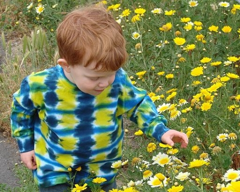Child Among Wildflowers