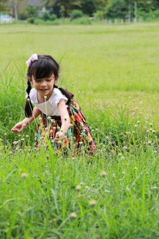 Young girl picking flowers in a grass field