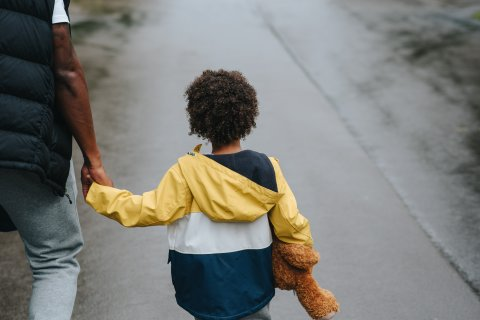 Back of small child holding hands with adult.