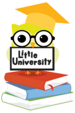 Little University picture of owl sitting on books