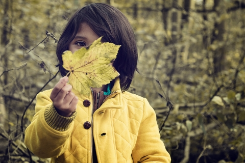 Child looking at leaf